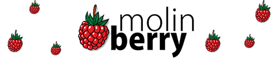 Molin Berry Flavors